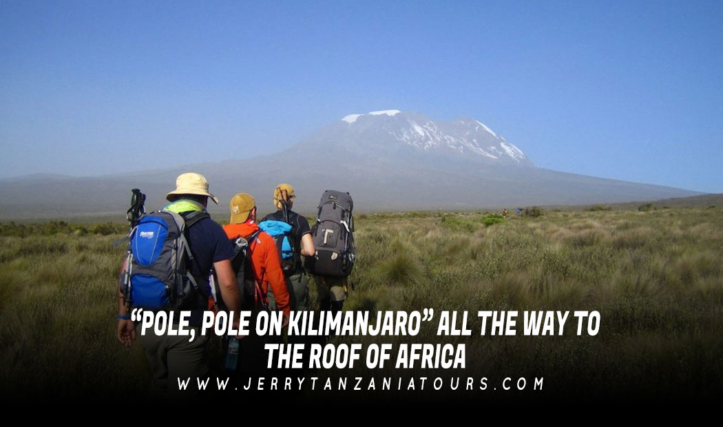 """""""POLE, POLE ON KILIMANJARO"""" ALL THE WAY TO THE ROOF OF AFRICA"""