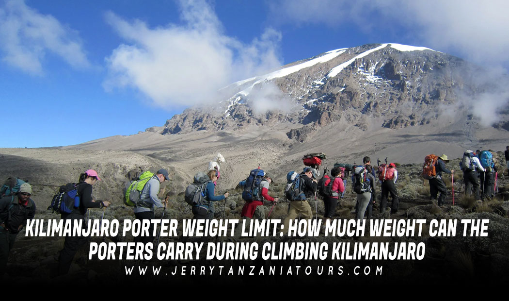 Kilimanjaro Porter Weight Limit: How Much Weight Can The Porters Carry During Climbing Kilimanjaro