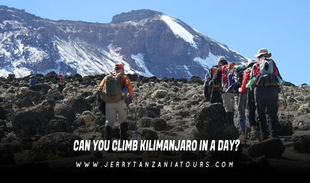 Can You Climb Kilimanjaro In A Day?