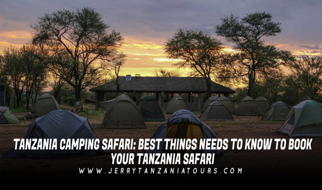 TANZANIA-CAMPING-SAFARI-BEST-THINGS-NEEDS-TO-KNOW-TO-BOOK-YOUR-TANZANIA-SAFARI
