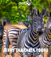 2 Days Tanzania Camping Safari pdf