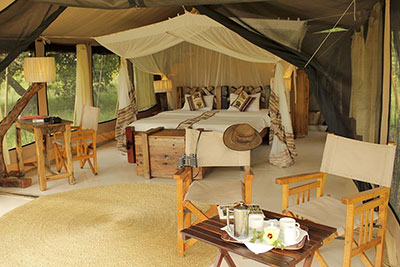 5 Days Tanzania Camping Safari