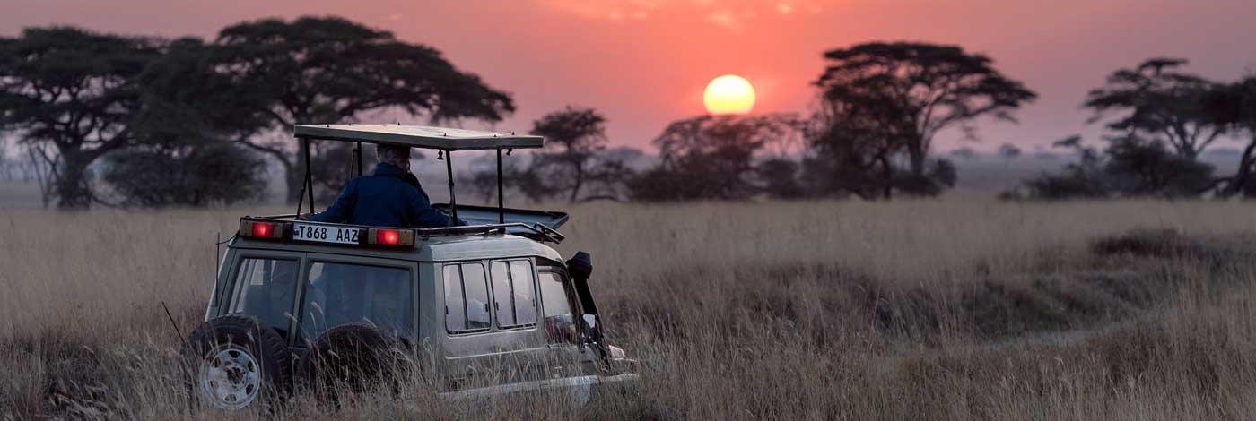 Best Time for Tanzania Safari