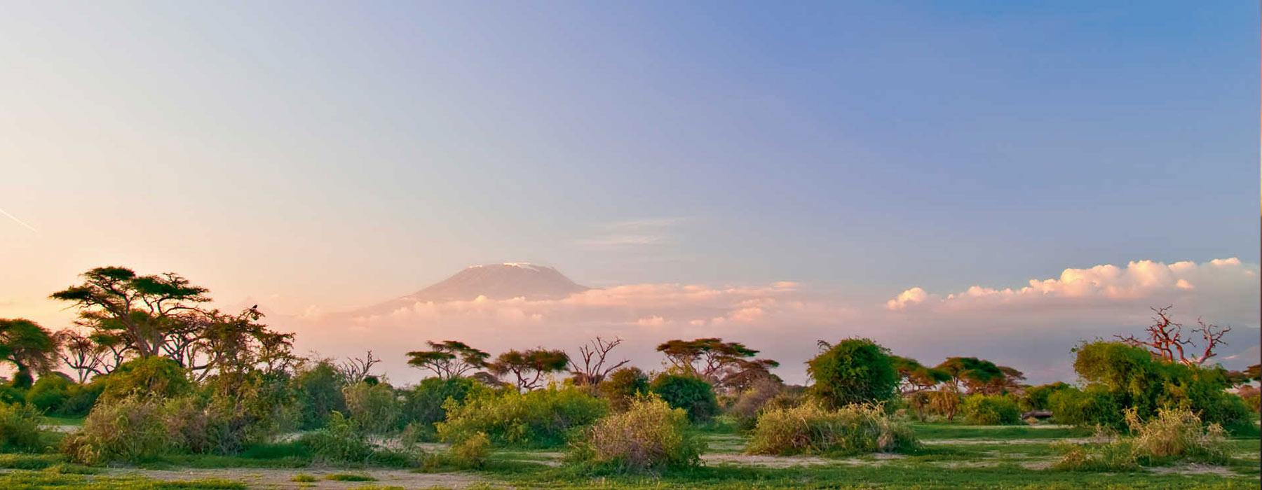 Electronic Gadgets On Kilimanjaro