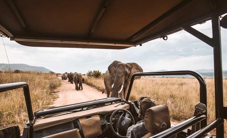 Safety Measures On Tanzania Safari Tours