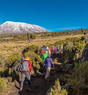 Kilimanjaro Activities