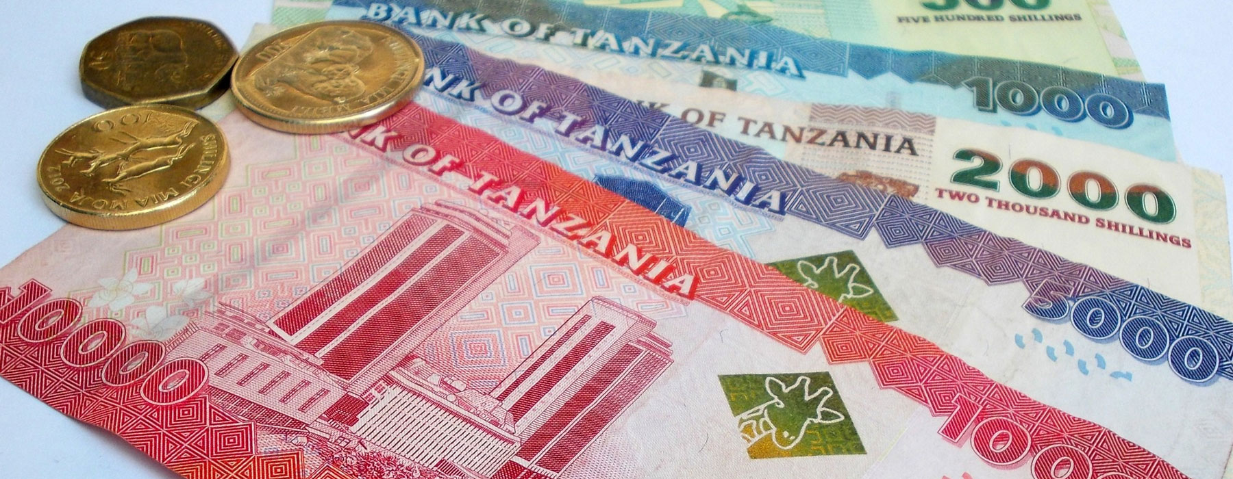 Money to Bring to Tanzania
